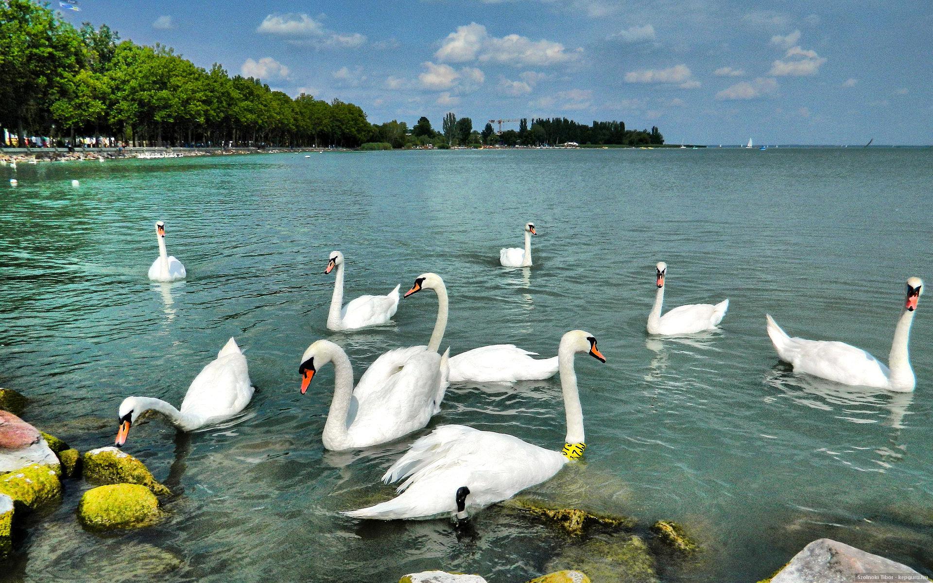 布达佩斯(Budapest)-巴拉顿湖区(Balaton)-萨格勒布(Zagreb)(350KM)