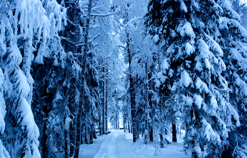 基律纳(Kiruna)- Kurravaara湖区营地
