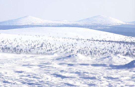 萨利色尔卡-瓦朗厄尔峡湾-希尔克内斯丨罕见极地冰川、冰洋、冰河,雪原探险