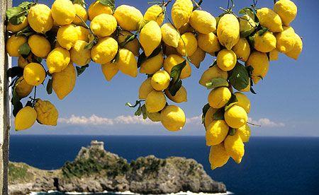 索伦托(Sorrento)-波西塔诺(Positano)-阿尔玛菲海岸(Almafi)