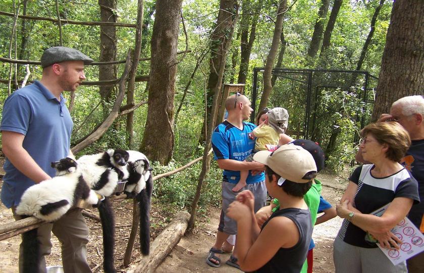 巴蒂拉克天坑(Gouffre de Padirac) - 卡尔维亚克动物保护区(La Reserve Zoologique de Calviac)