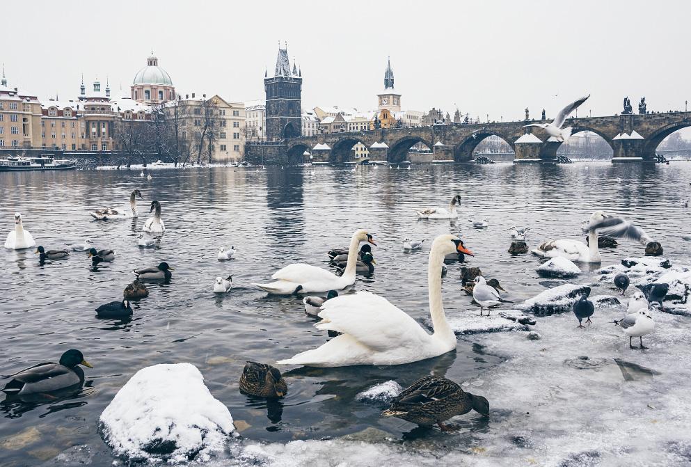 克鲁姆洛夫(CK小镇)-布拉格(Prague)(173KM)