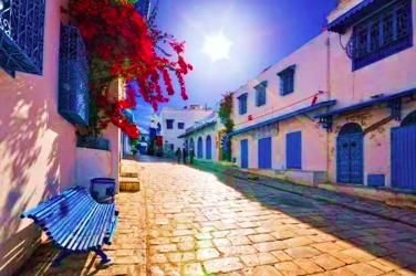 苏斯-迦太基-蓝白小镇-突尼斯