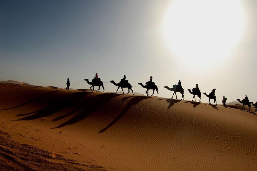 红海 (Hurghada)-开罗(Cairo) (早,午餐)