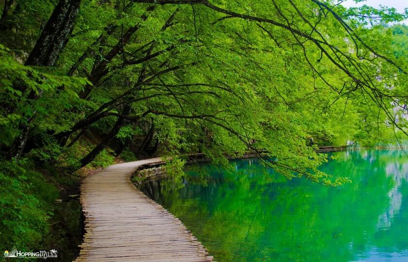 十六湖公园(Plitvice Lakes National Park)